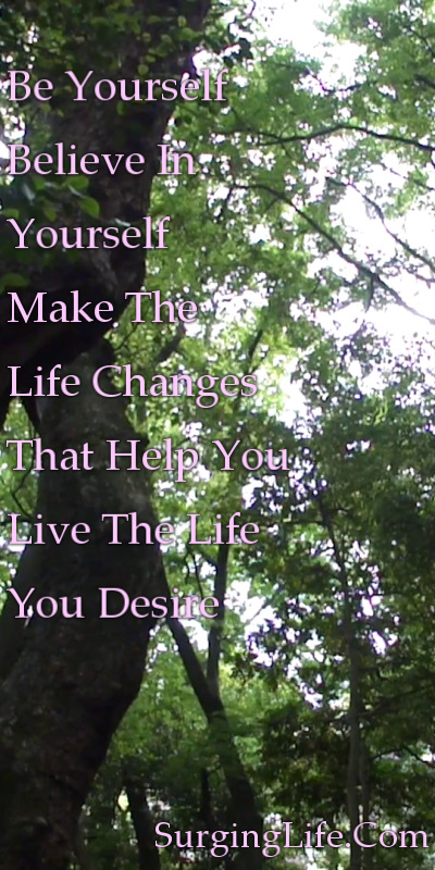 10 Minute Tree Meditation Video Lush Woodland