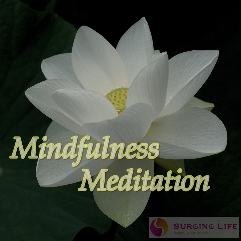 Guided Mindfulness Meditation mp3 By Stephen Frost Of SurgingLife